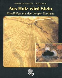 Aus Holz wird Stein von Amelingmeier,  Eckard, Bartholomä,  Alfred, Fohrer,  Erwin, Kelber,  Klaus P, Nikel,  Siegfried, Oehm,  D, Schüssler,  Herbert, Simon,  Theo, Wiedmann,  Karl