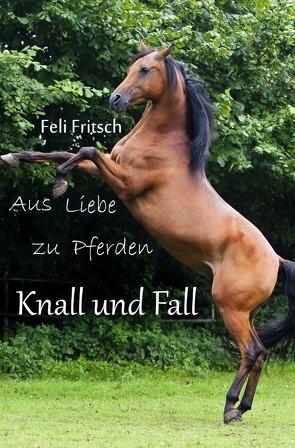 Aus Liebe zu Pferden / Aus Liebe zu Pferden – Knall und Fall von Fritsch,  Feli