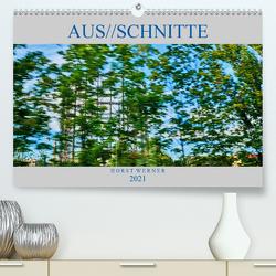 Aus//schnitte (Premium, hochwertiger DIN A2 Wandkalender 2021, Kunstdruck in Hochglanz) von Werner,  Horst