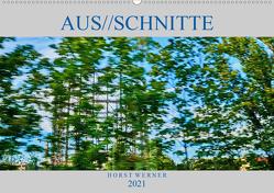 Aus//schnitte (Wandkalender 2021 DIN A2 quer) von Werner,  Horst