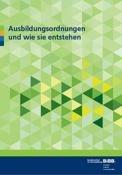 Ausbildungsordnungen und wie sie entstehen von Lorig,  Barbara, Schwarz,  Henrik, Stöhr,  Andreas