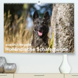 ausdrucksvolle Holländische Schäferhunde (Premium, hochwertiger DIN A2 Wandkalender 2020, Kunstdruck in Hochglanz) von Verena Scholze,  Fotodesign