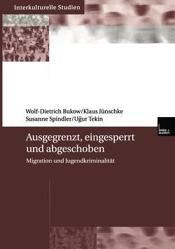 Ausgegrenzt, eingesperrt und abgeschoben von Bukow,  Wolf- Dietrich, Jünschke,  Klaus, Spindler,  Susanne, Tekin,  Ucur