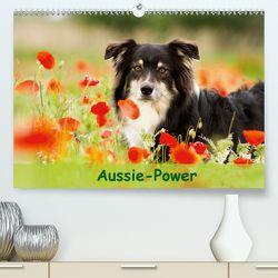 Aussie-Power (Premium, hochwertiger DIN A2 Wandkalender 2020, Kunstdruck in Hochglanz) von Mayer,  Andrea