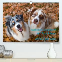 Australian Shepherd 2020 (Premium, hochwertiger DIN A2 Wandkalender 2020, Kunstdruck in Hochglanz) von Mirsberger,  Annett