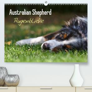 Australian Shepherd – Augenblicke (Premium, hochwertiger DIN A2 Wandkalender 2021, Kunstdruck in Hochglanz) von Andrey,  David