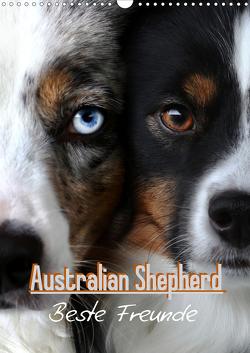 Australian Shepherd – Beste Freunde (Wandkalender 2021 DIN A3 hoch) von Youlia
