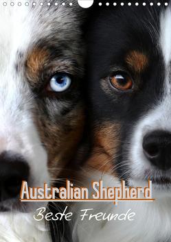 Australian Shepherd – Beste Freunde (Wandkalender 2021 DIN A4 hoch) von Youlia