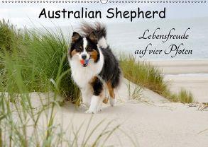 Australian Shepherd – Lebensfreude auf vier Pfoten (Wandkalender 2018 DIN A2 quer) von Nozulak,  Miriam