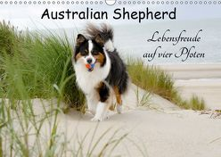 Australian Shepherd – Lebensfreude auf vier Pfoten (Wandkalender 2019 DIN A3 quer) von Nozulak,  Miriam