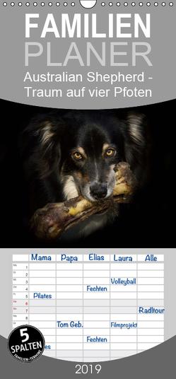 Australian Shepherd – Traum auf vier Pfoten – Familienplaner hoch (Wandkalender 2019 , 21 cm x 45 cm, hoch) von Mayer Tierfotografie,  Andrea