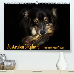 Australian Shepherd – Traum auf vier Pfoten (Premium, hochwertiger DIN A2 Wandkalender 2021, Kunstdruck in Hochglanz) von Mayer Tierfotografie,  Andrea