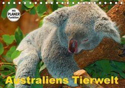 Australiens Tierwelt (Tischkalender 2019 DIN A5 quer) von Stanzer,  Elisabeth