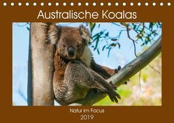 Australische Koalas (Tischkalender 2019 DIN A5 quer) von Smith,  Sidney
