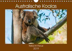 Australische Koalas (Wandkalender 2019 DIN A4 quer) von Smith,  Sidney