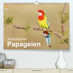 Australische Papageien (Premium, hochwertiger DIN A2 Wandkalender 2020, Kunstdruck in Hochglanz) von birdimagency,  BIA