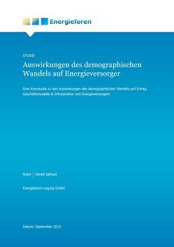 Auswirkungen des demografischen Wandels auf Energieversorger von Iglhaut,  Daniel
