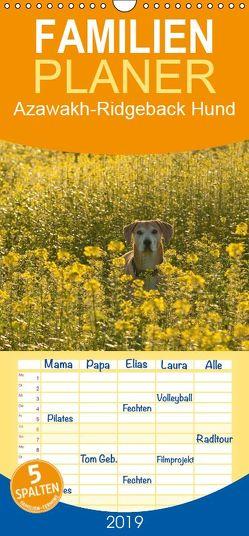 Azawakh-Ridgeback Hund – Familienplaner hoch (Wandkalender 2019 , 21 cm x 45 cm, hoch) von Bölts,  Meike
