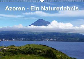 Azoren – Ein Naturerlebnis (Wandkalender 2018 DIN A3 quer) von Löwe,  Karsten