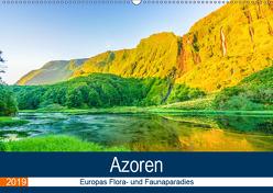 Azoren: Europas Flora- und Faunaparadies (Wandkalender 2019 DIN A2 quer) von Krauss,  Benjamin