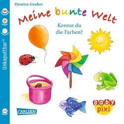 Baby Pixi 38: VE 5 Meine bunte Welt von Gruber,  Denitza