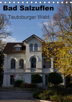 Bad Salzuflen – Teutoburger Wald (Tischkalender 2021 DIN A5 hoch) von Peitz,  Martin