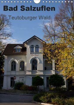 Bad Salzuflen – Teutoburger Wald (Wandkalender 2019 DIN A4 hoch) von Peitz,  Martin