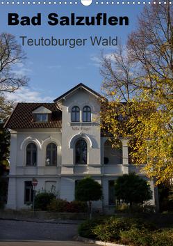 Bad Salzuflen – Teutoburger Wald (Wandkalender 2020 DIN A3 hoch) von Peitz,  Martin