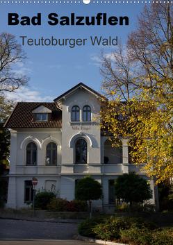 Bad Salzuflen – Teutoburger Wald (Wandkalender 2021 DIN A2 hoch) von Peitz,  Martin
