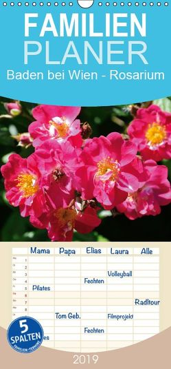 Baden bei Wien – Rosarium – Familienplaner hoch (Wandkalender 2019 , 21 cm x 45 cm, hoch) von J. Strutz,  Rudolf