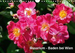 Baden bei Wien – Rosarium (Wandkalender 2019 DIN A4 quer) von J. Strutz,  Rudolf