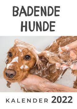 Badende Hunde