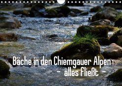 Bäche in den Chiemgauer Alpen – alles fließt (Wandkalender 2019 DIN A4 quer) von Stehlmann,  Ute