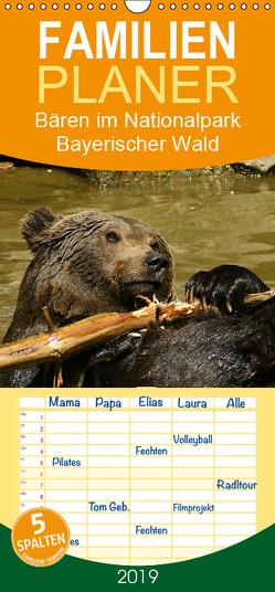Bären im Nationalpark Bayerischer Wald – Familienplaner hoch (Wandkalender 2019 , 21 cm x 45 cm, hoch) von Müller,  Erika