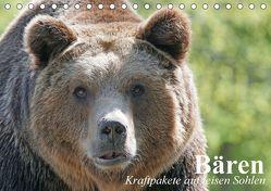 Bären. Kraftpakete auf leisen Sohlen (Tischkalender 2018 DIN A5 quer) von Stanzer,  Elisabeth