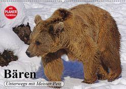 Bären. Unterwegs mit Meister Petz (Wandkalender 2019 DIN A2 quer) von Stanzer,  Elisabeth
