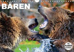 Bären (Wandkalender 2019 DIN A4 quer) von Stanzer,  Elisabeth