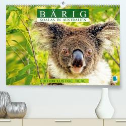 Bärig: Koalas in Australien – Edition lustige Tiere (Premium, hochwertiger DIN A2 Wandkalender 2020, Kunstdruck in Hochglanz) von CALVENDO