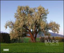 Bäume 2020 – Wandkalender 58,4 x 48,5 cm – Spiralbindung von DUMONT Kalenderverlag, Fotografen,  verschiedenen