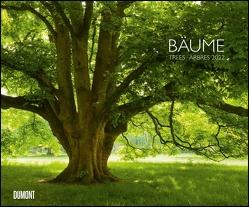 Bäume 2022 – Wandkalender 58,4 x 48,5 cm – Spiralbindung von Wohner,  Heinz