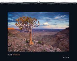 Bäume 2018 von KUNTH Verlag