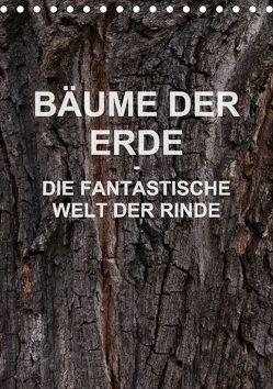 BÄUME DER ERDE – DIE FANTASTISCHE WELT DER RINDE (Tischkalender 2018 DIN A5 hoch) von Schreiter,  Martin