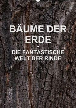 BÄUME DER ERDE – DIE FANTASTISCHE WELT DER RINDE (Wandkalender 2018 DIN A2 hoch) von Schreiter,  Martin