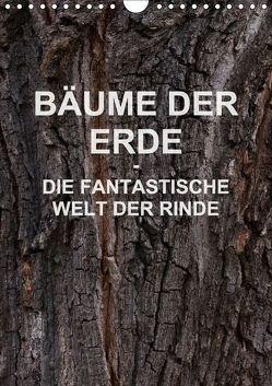 BÄUME DER ERDE – DIE FANTASTISCHE WELT DER RINDE (Wandkalender 2018 DIN A4 hoch) von Schreiter,  Martin