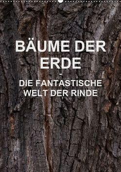BÄUME DER ERDE – DIE FANTASTISCHE WELT DER RINDE (Wandkalender 2019 DIN A2 hoch) von Schreiter,  Martin