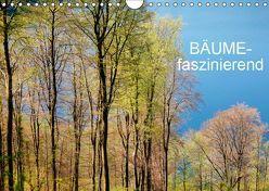 Bäume-faszinierend (Wandkalender 2019 DIN A4 quer) von Jaeger,  Thomas