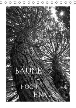 Bäume – hoch hinaus (Tischkalender 2021 DIN A5 hoch) von Albilt,  Rabea
