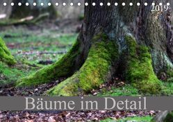 Bäume im Detail (Tischkalender 2019 DIN A5 quer)