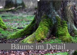 Bäume im Detail (Wandkalender 2019 DIN A2 quer)