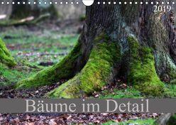 Bäume im Detail (Wandkalender 2019 DIN A4 quer)
